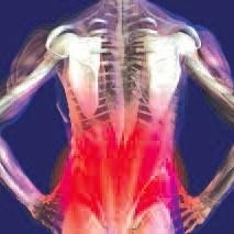 Treatment for Sciatica Pain
